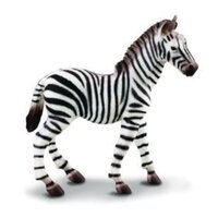 Collecta - Zebra Common Foal 88168