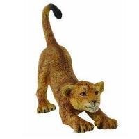 Collecta - Lion Cub Stretching 88416