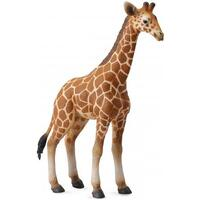 Collecta - Reticulated Giraffe Calf 88535