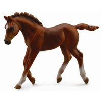 Collecta - Thoroughbred Foal Walking - Chestnut 88670