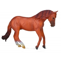 Collecta - Australian Stock Horse Stallion - Chestnut 88712