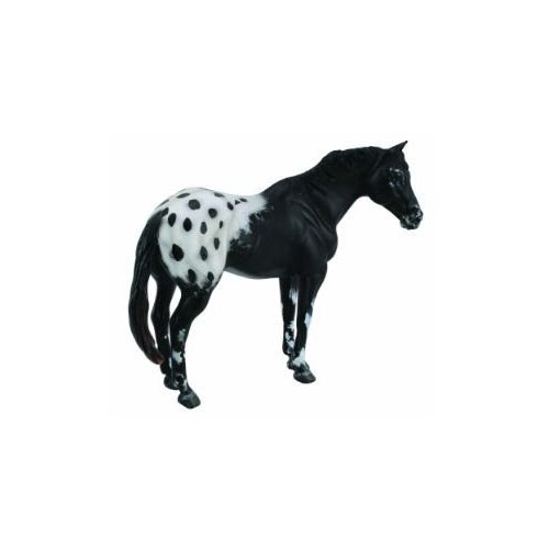 Collecta - Appaloosa Stallion Black 88437